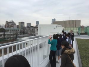 屋上から校庭を見学